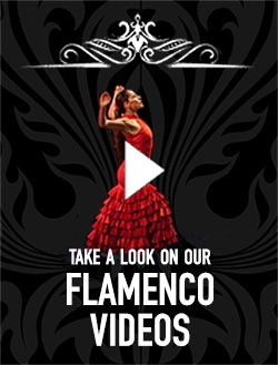 Flamenco Videos