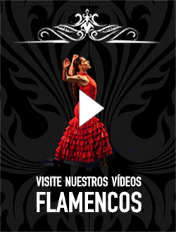 Videos Flamencos